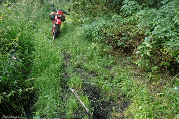 болотная дорога, торф, грязь