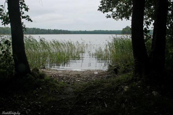 Озеро Шевино, южный выход к воде