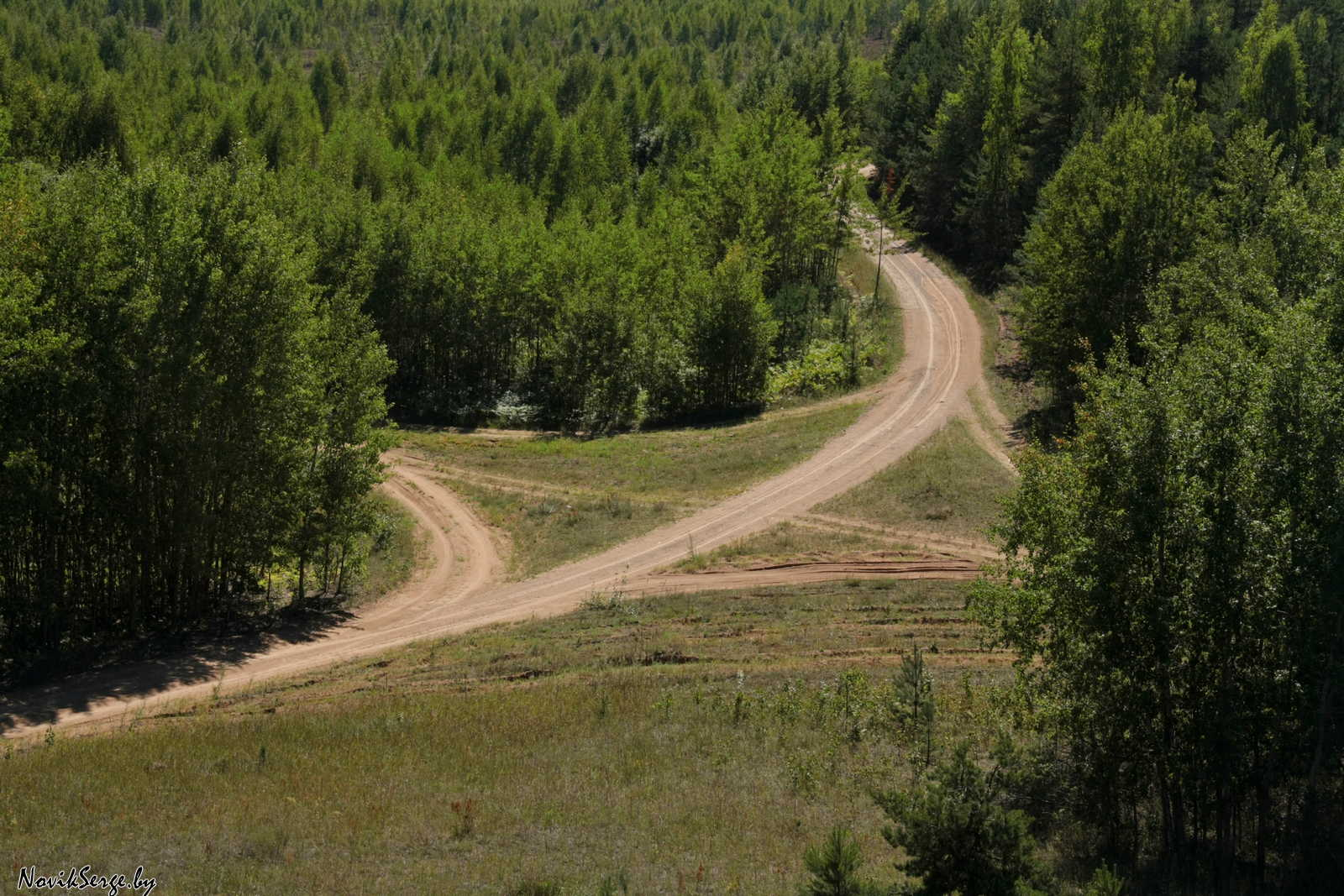 лесная дорога, перекрёсток