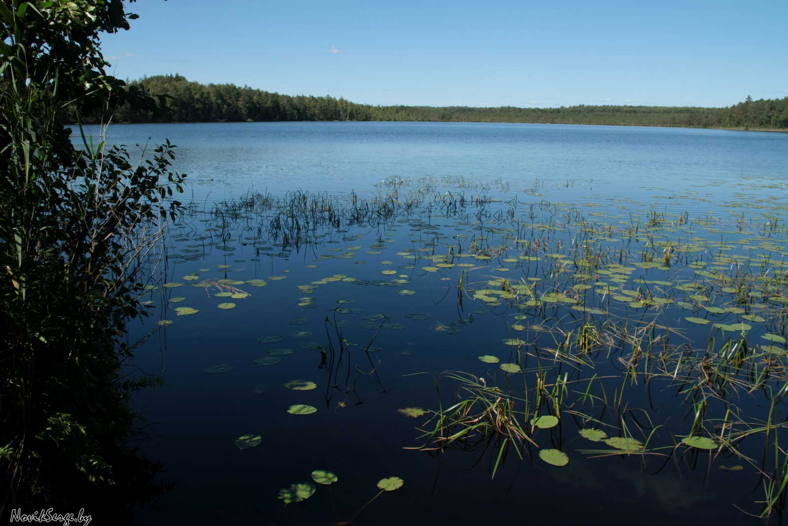 Озеро Волынец