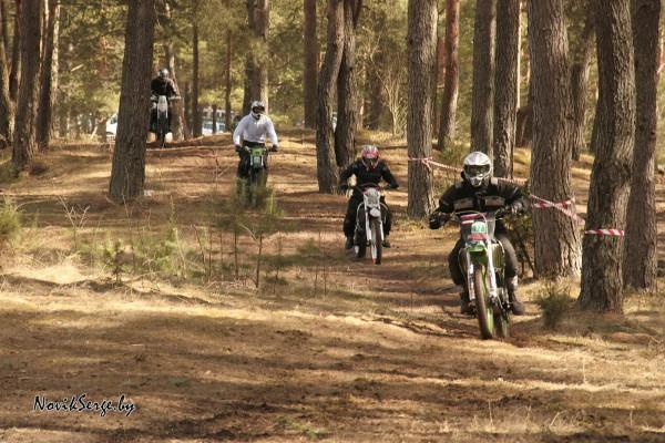 Мотоциклисты в лесу