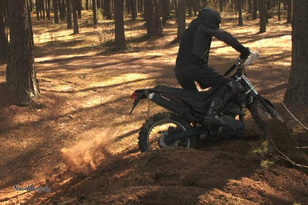 мотоцикл лес