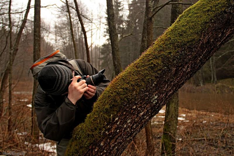 фотограф мох дерево