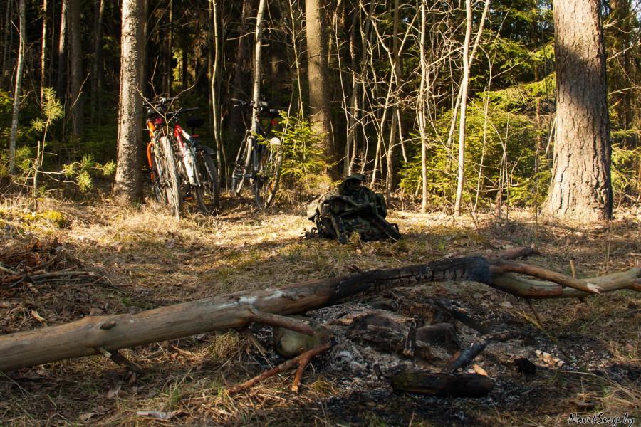 кострище, велосипеды, лес